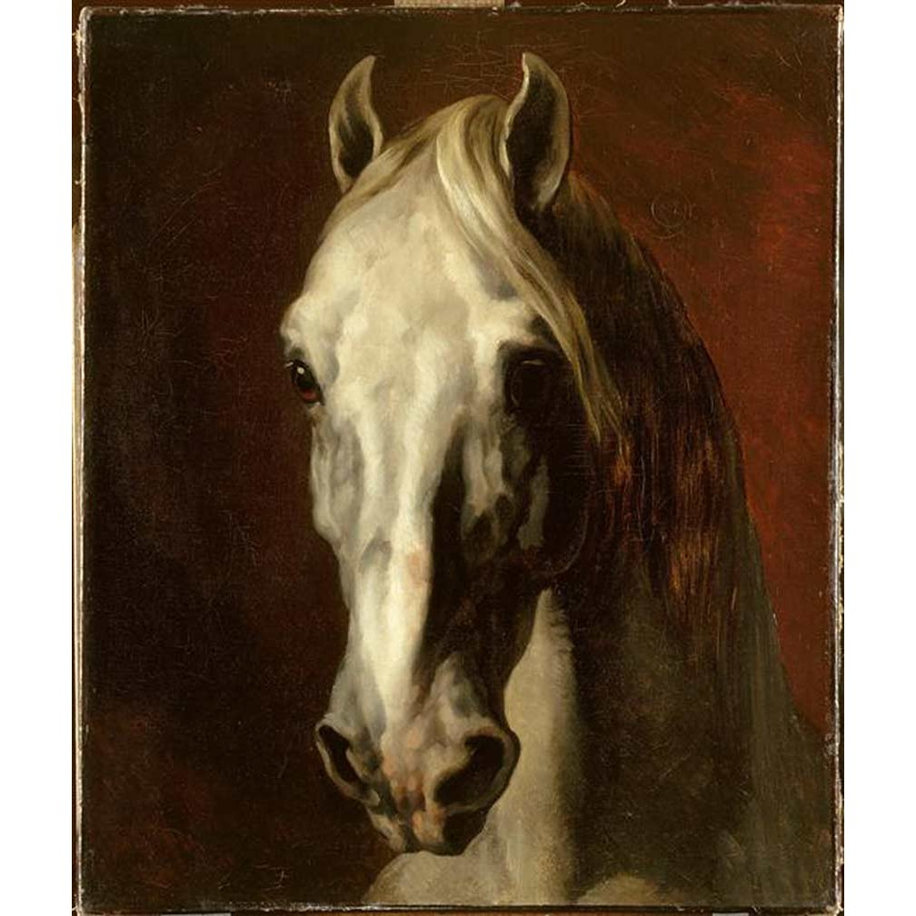 the-head-of-white-horse_painter-theodore-gericault.jpg