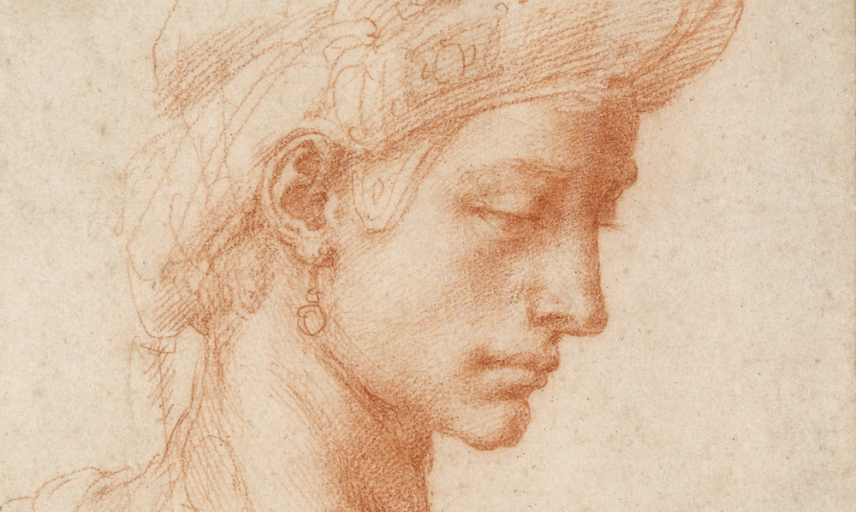 michelangelo-display-landscape.png
