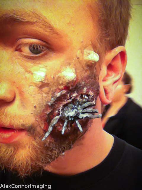 Spider eggs makeup- detail