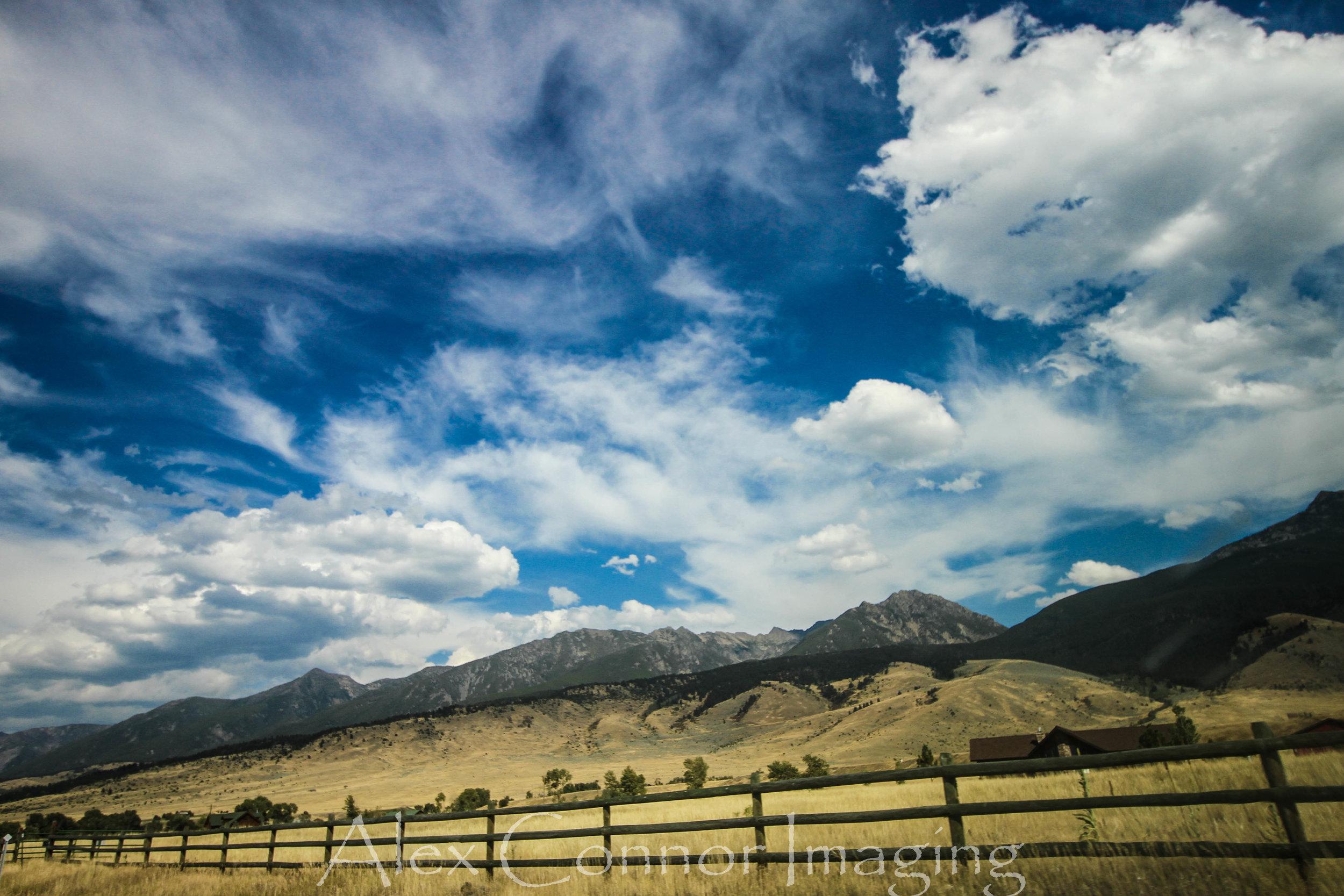 Yellowstone -w-13.jpg