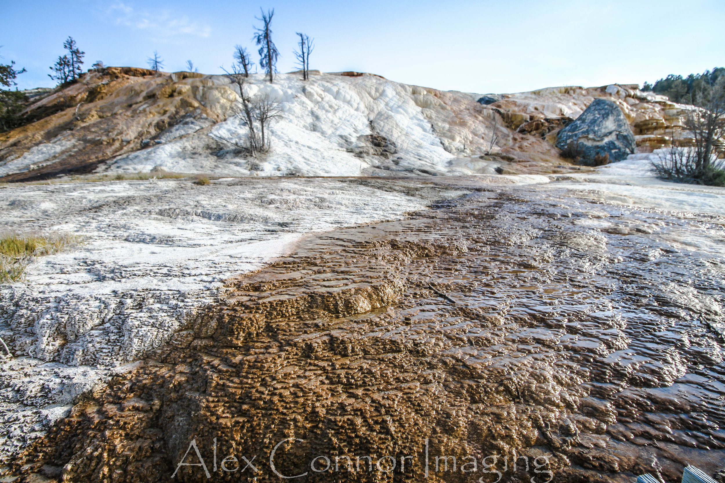 Yellowstone -w-30.jpg