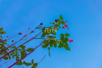 Flyer-thumb-350-geir-satre.jpg