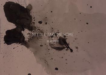 Needle-take-me-home-thumb-350-geir-satre-.jpg