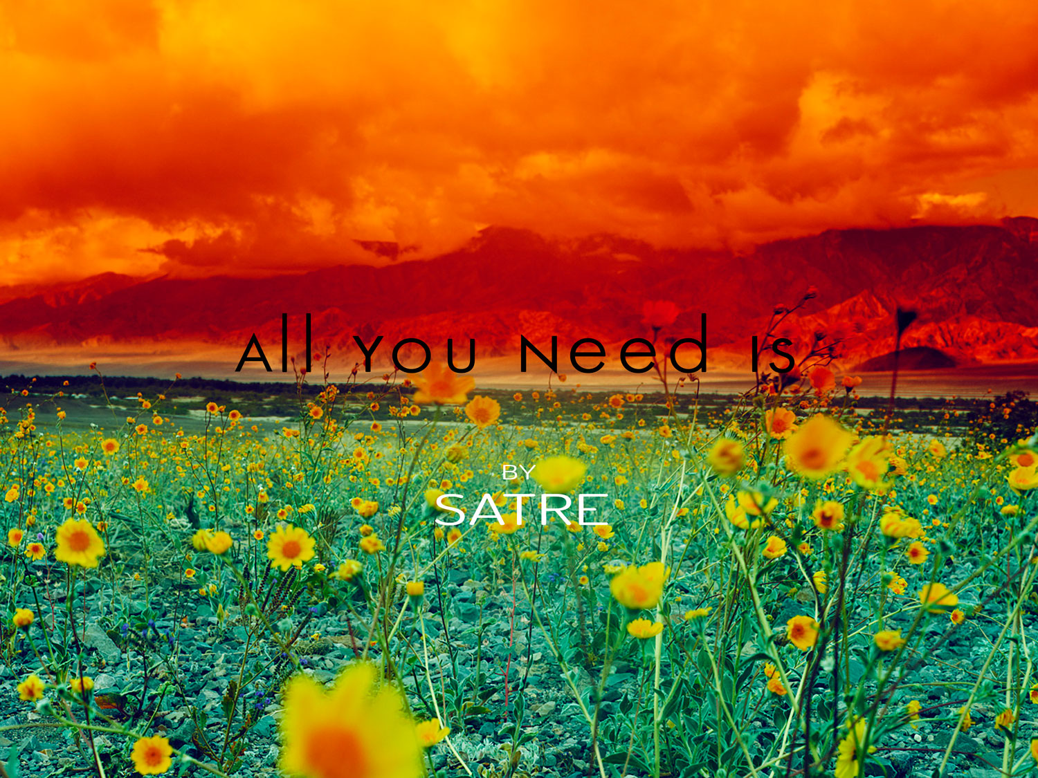 All-You-Need-Is-Front-1500-geir-satre-a.jpg