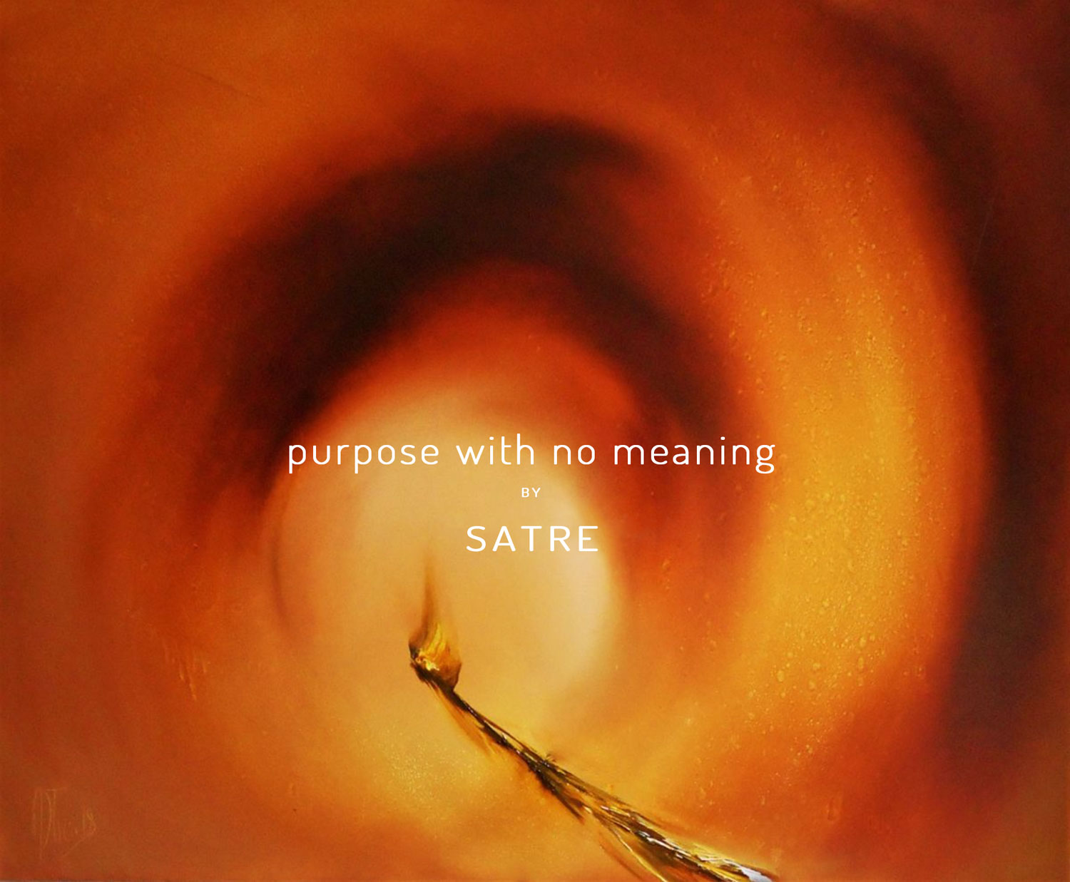 Purpose-WIth-No-Meaning-front-1500-geir-satre.jpg