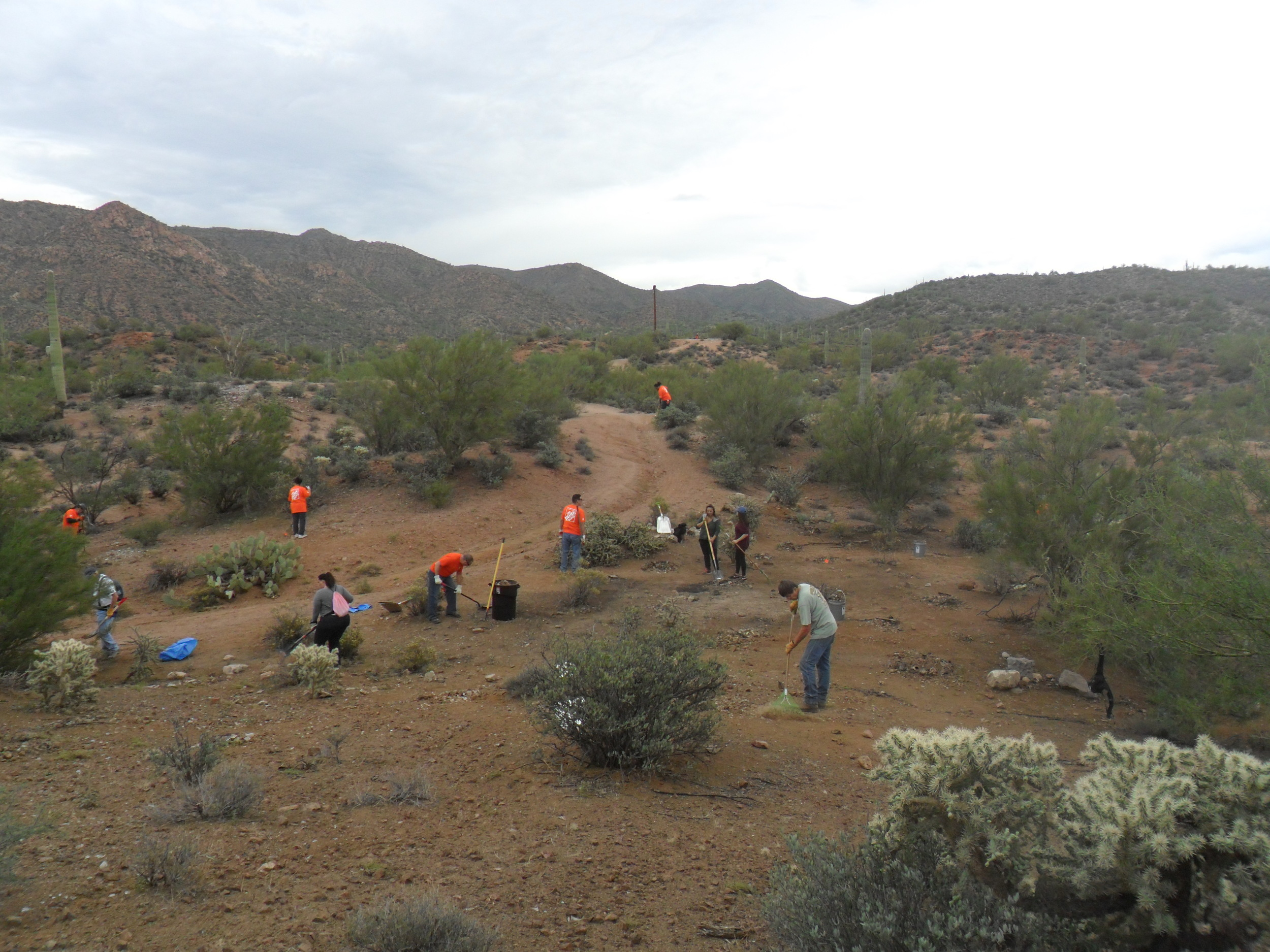 Site 3 During 7.JPG