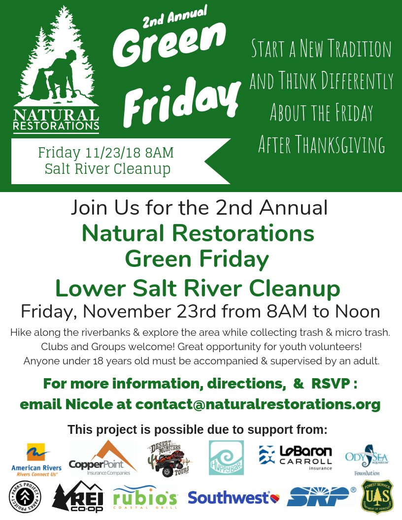 11.23.18 Green Friday Flyer.png