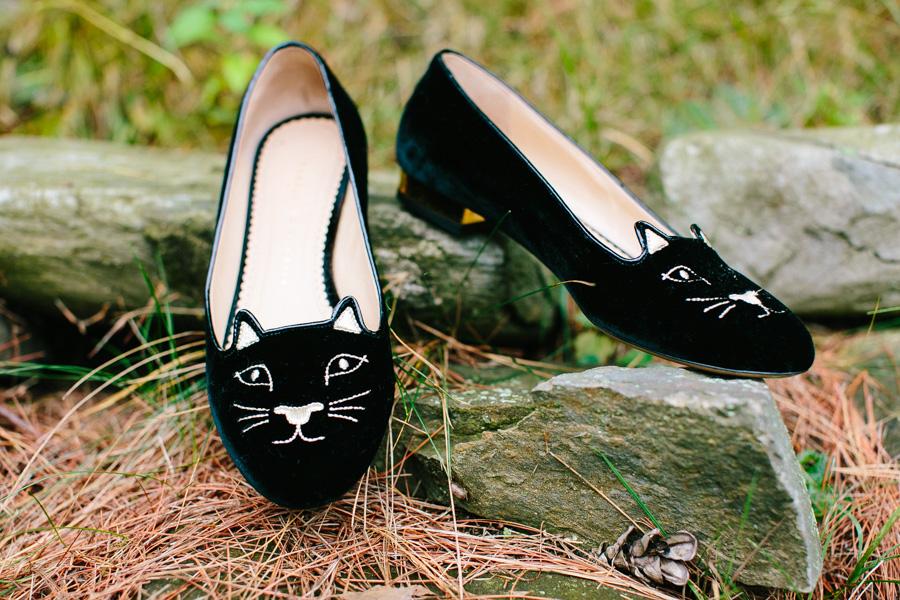 Cat Wedding Details