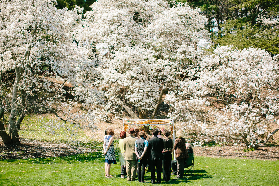 008-arnold-arboretum-wedding-photography.jpg
