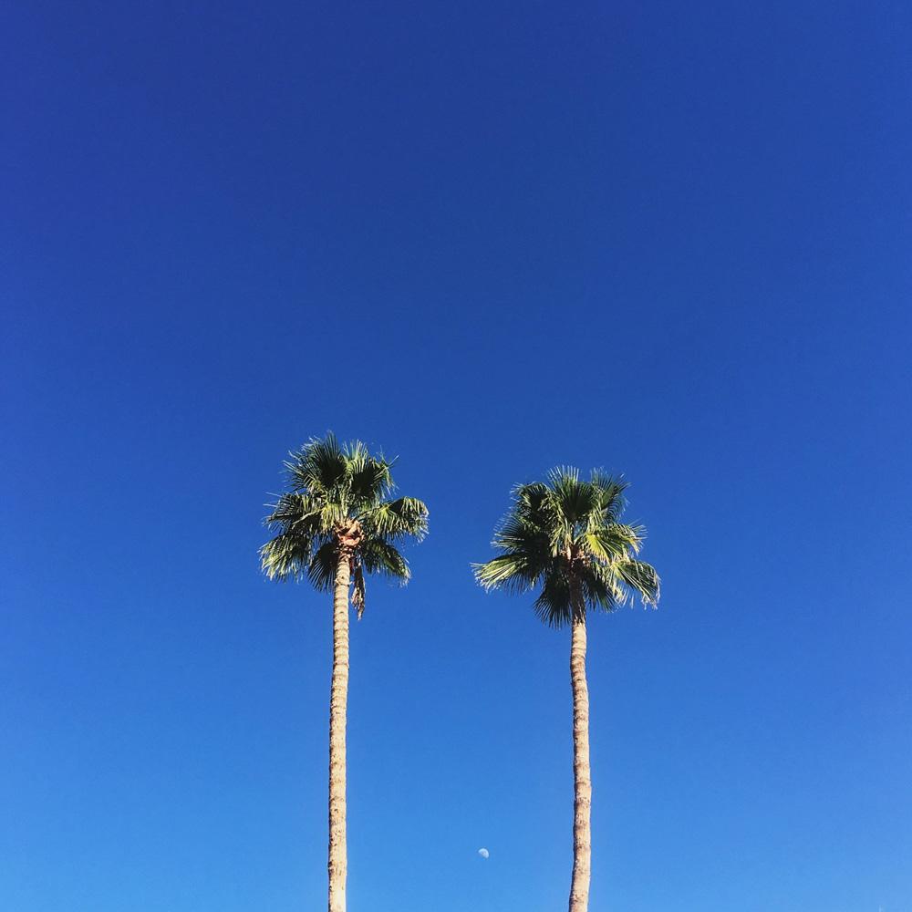 018-california-lifestyle-photography.jpg