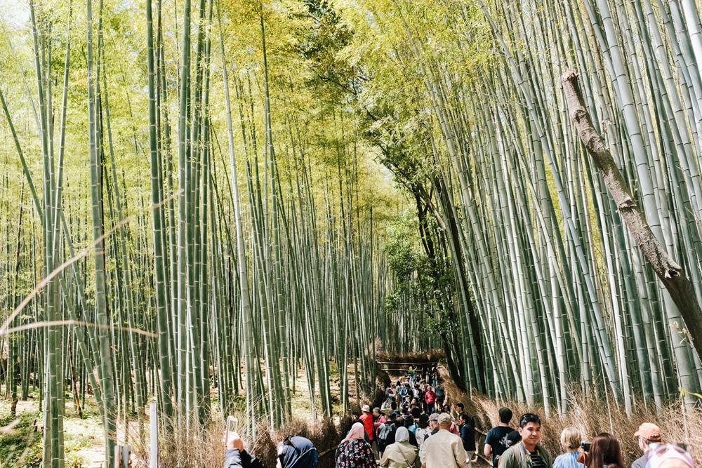 078-japan-wedding-photographer.jpg
