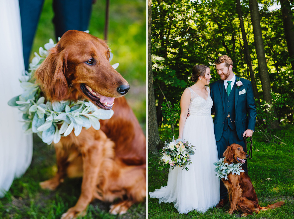 028-wedding-dog.jpg