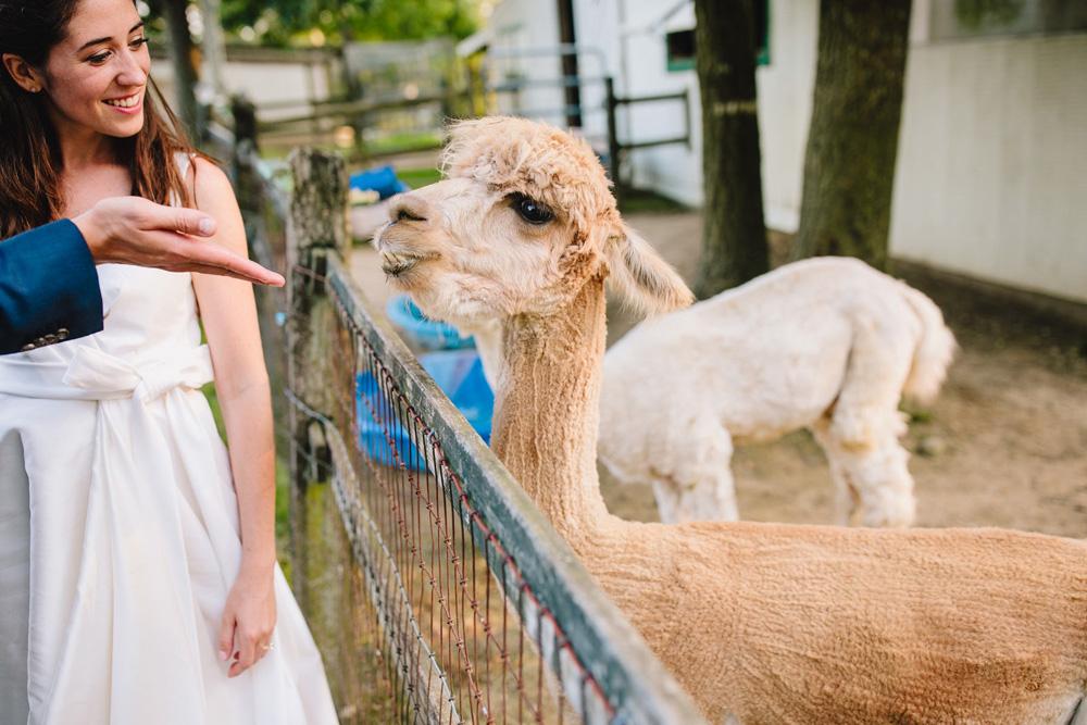 094-coonamessett-farm-wedding-photography.jpg