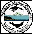logo-wmmsn.png