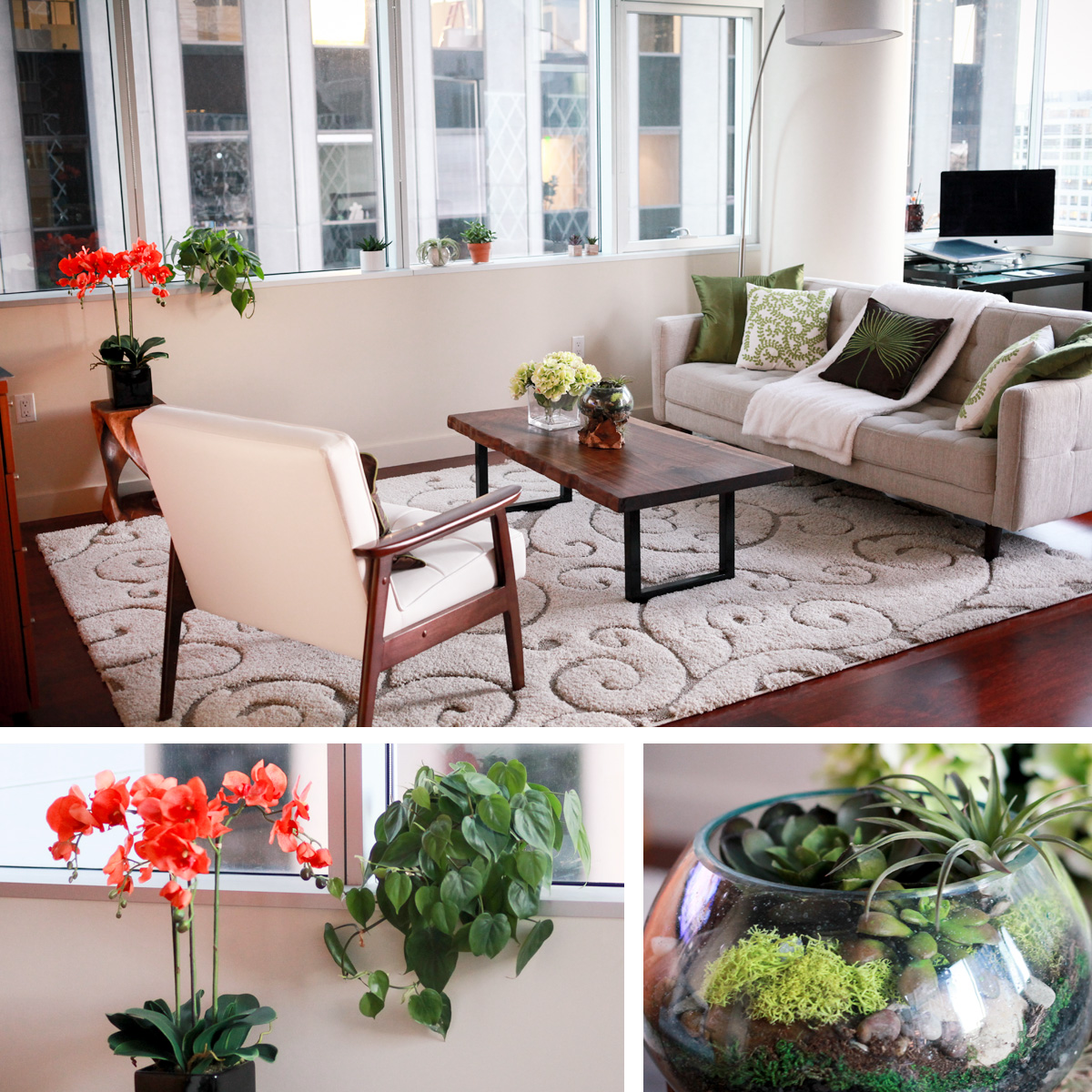Midcentury Modern Interior Design with Houseplants