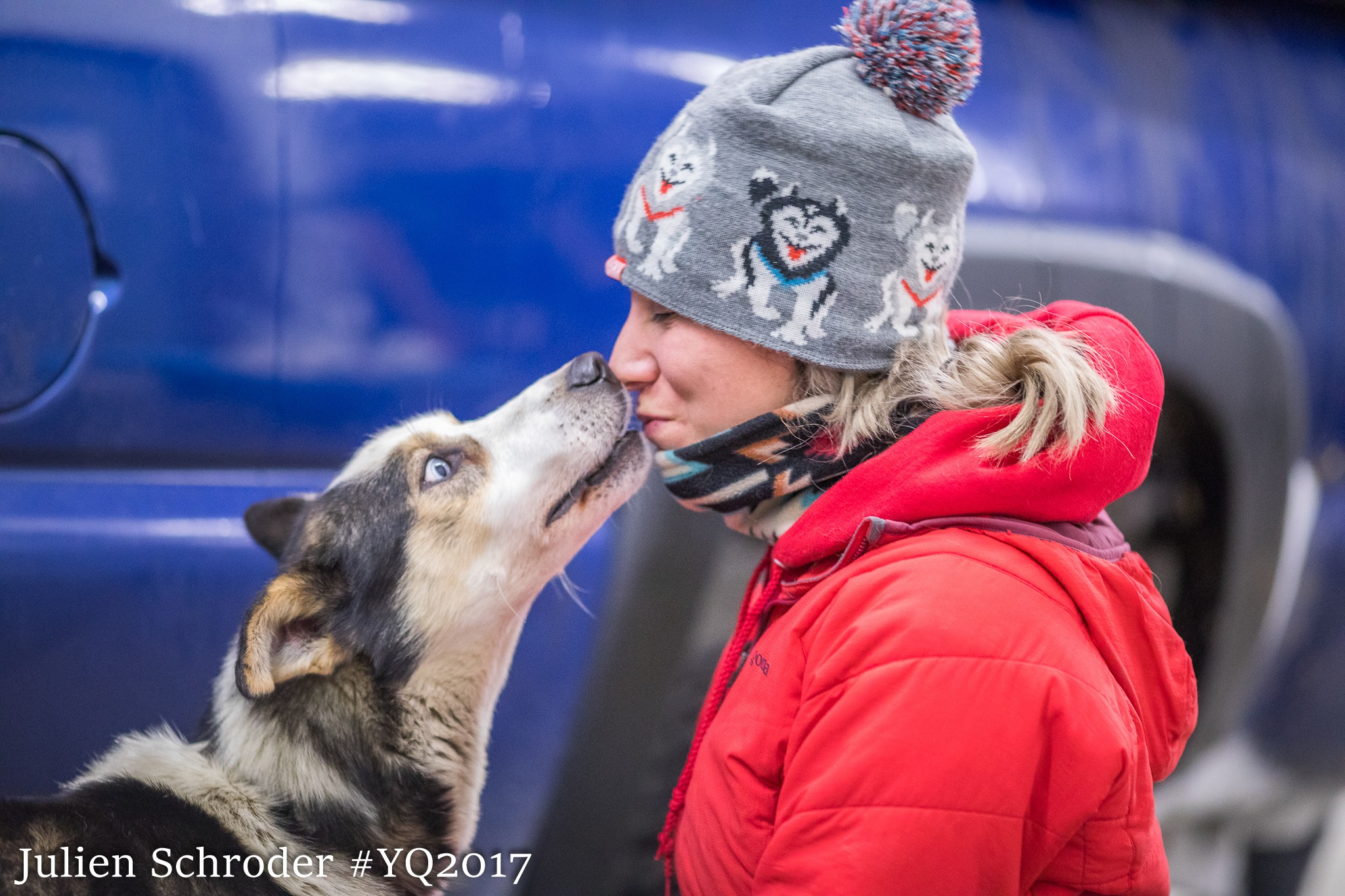 Alaska Bound... - Amanda's experience at the Bedortha's kennel was unlike anything she experienced at her previous kennel. After two weeks here, she applied to every big name in Alaska and landed a Musher/Tour Guide gig with Alaska Icefield Expeditions. Brooks packed up her house, put a few items in storage and within a few weeks she had a one-way ticket and made her way cross-country to pursue her dream of exploring the vast rugged wilderness of Alaska.Dog camp was where she met Matt and after a summer of working together, Hall invited her back to Smokin' Ace Kennels as a handler. Amanda spent the winter helping train the race team in Two Rivers and learning first hand experience about the in's and out's of racing.