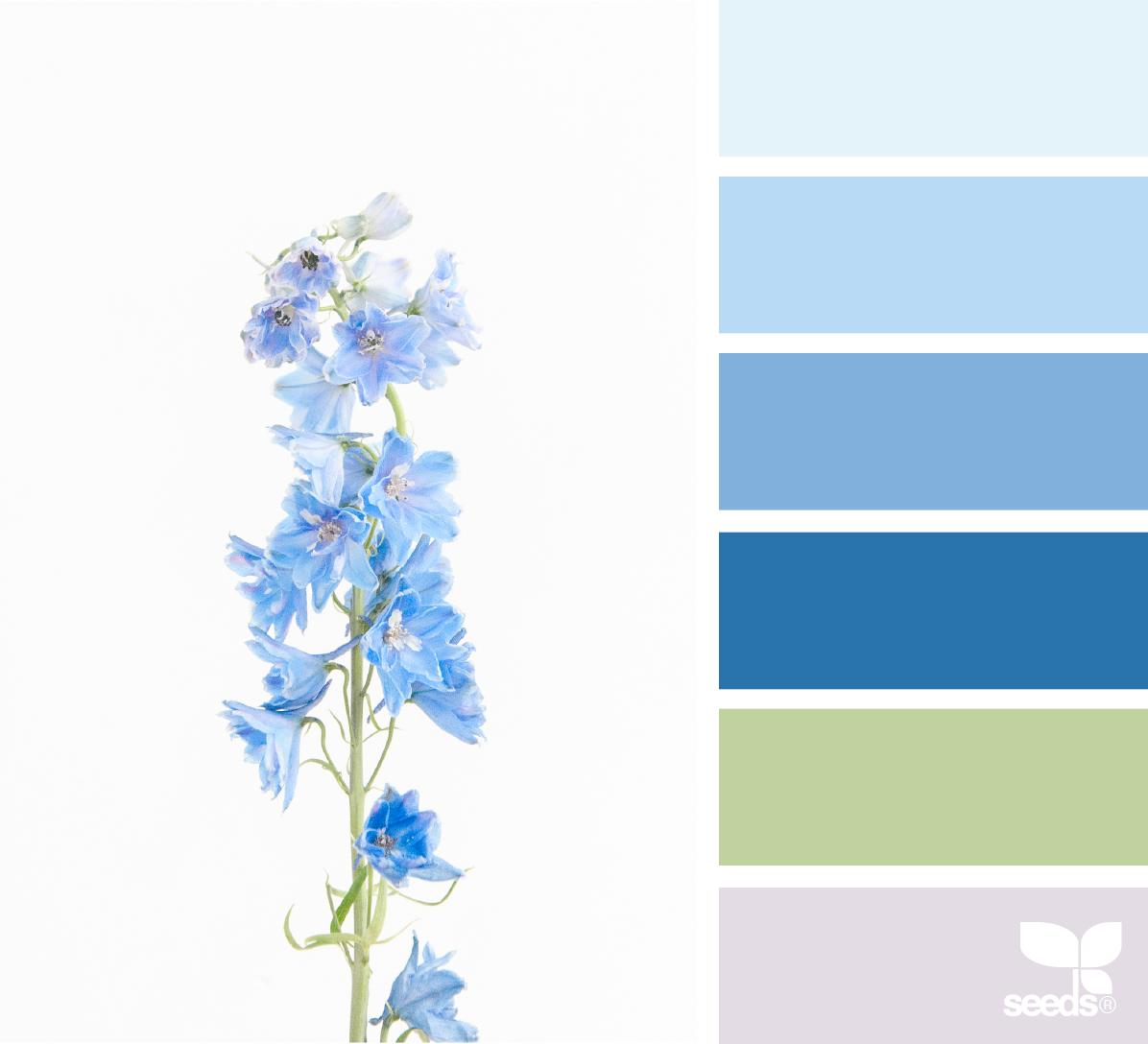 Image via  @patriciaarts   Palette by  Design-Seeds