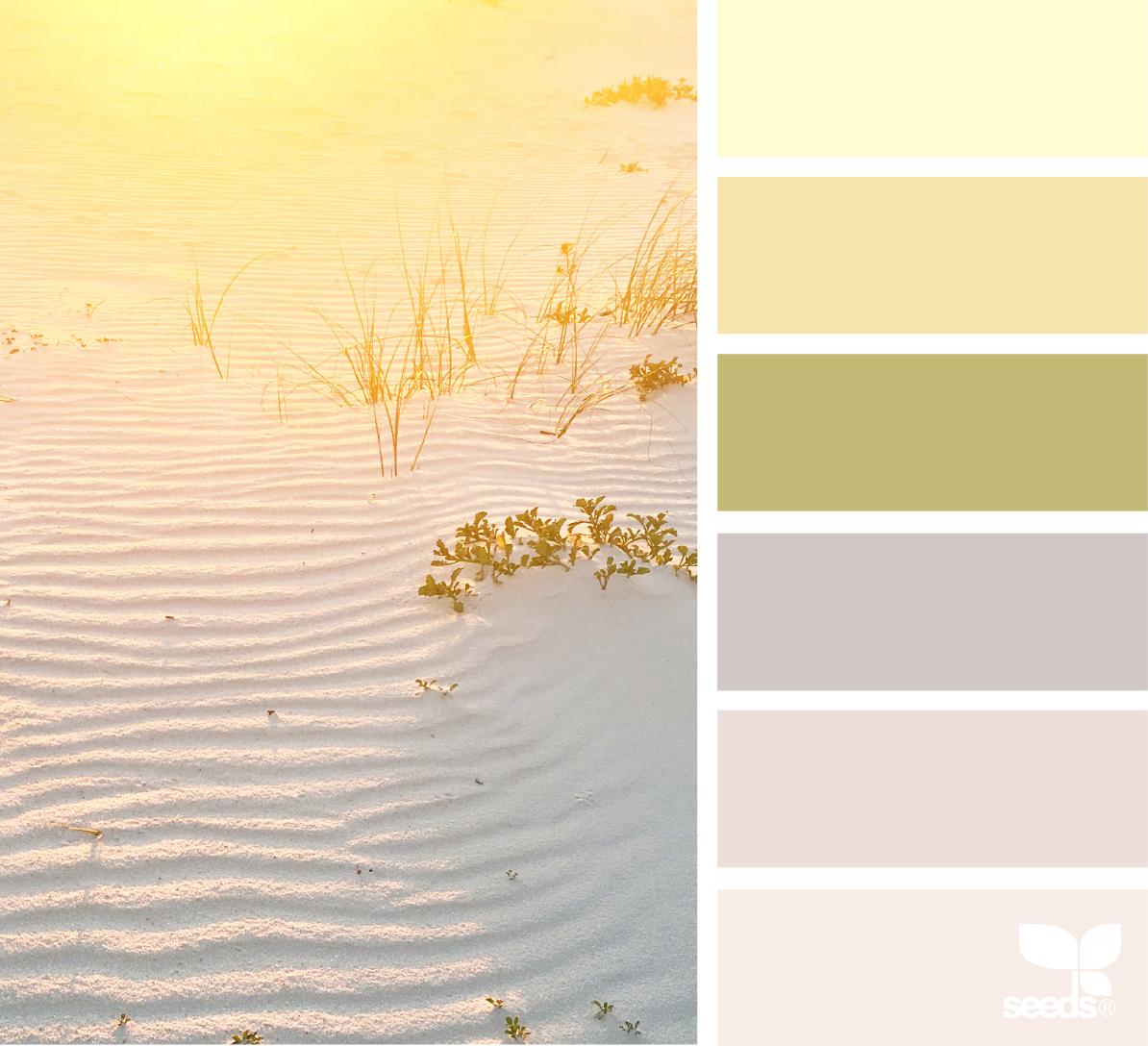 Image via: @lashesandlenses   Palette via:  Design-Seeds
