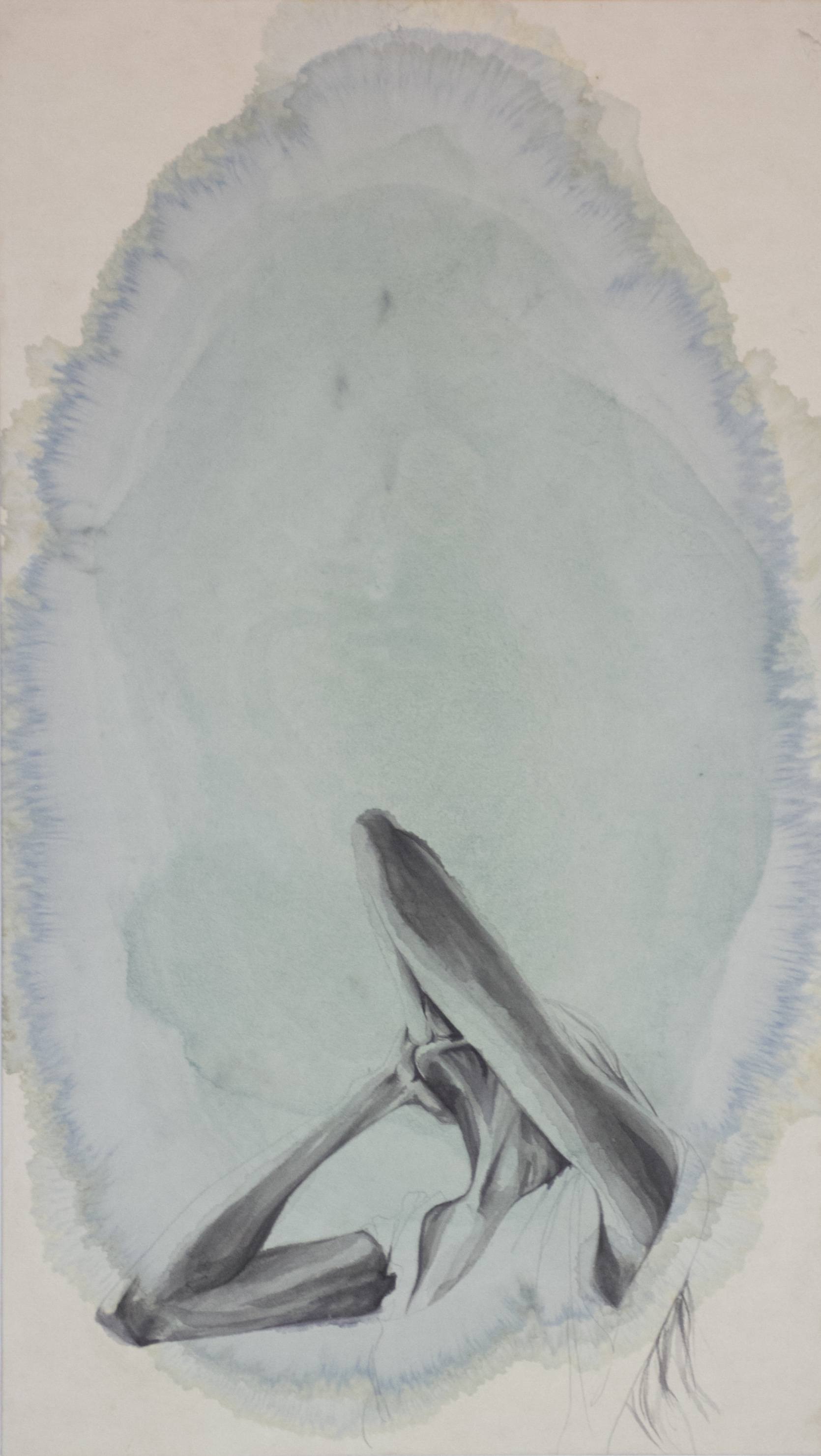 1/3 from Deep Waters Series. 28x16in. Gouache and ink on Mulberry paper. By Laura Short and Joanna Ahlman. $200.00