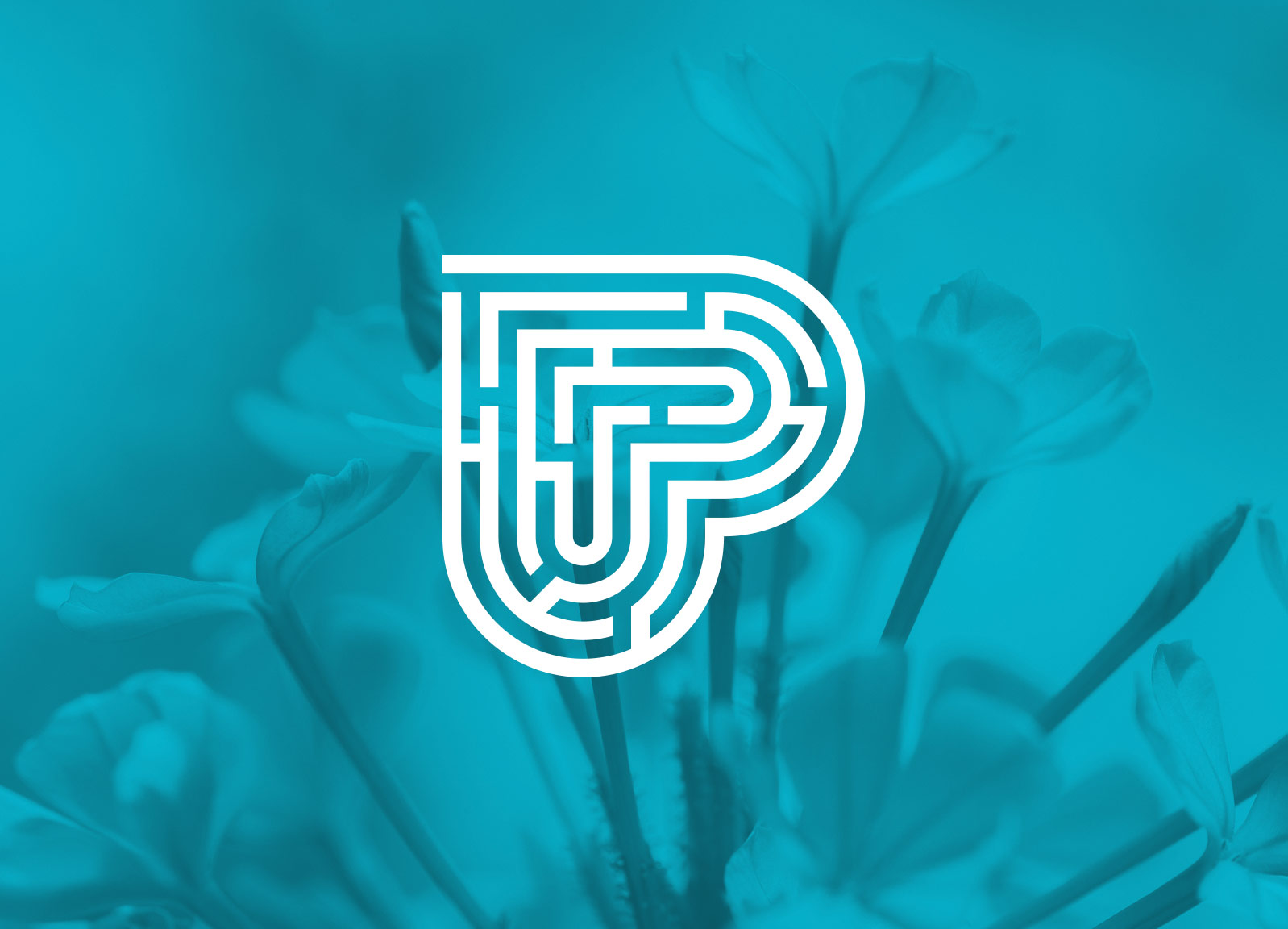 Peaceful Heart Pathways logo