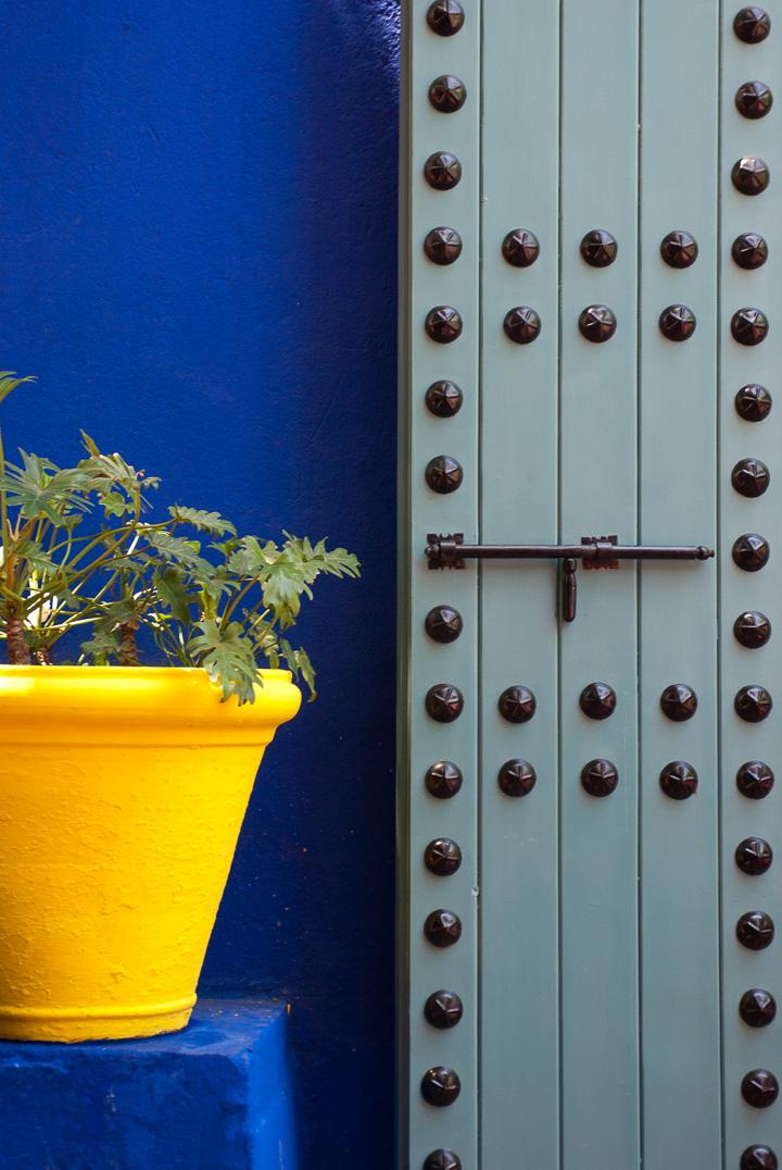 Pot_de_fleur,_Jardin_Majorelle,_Marrakech.jpg