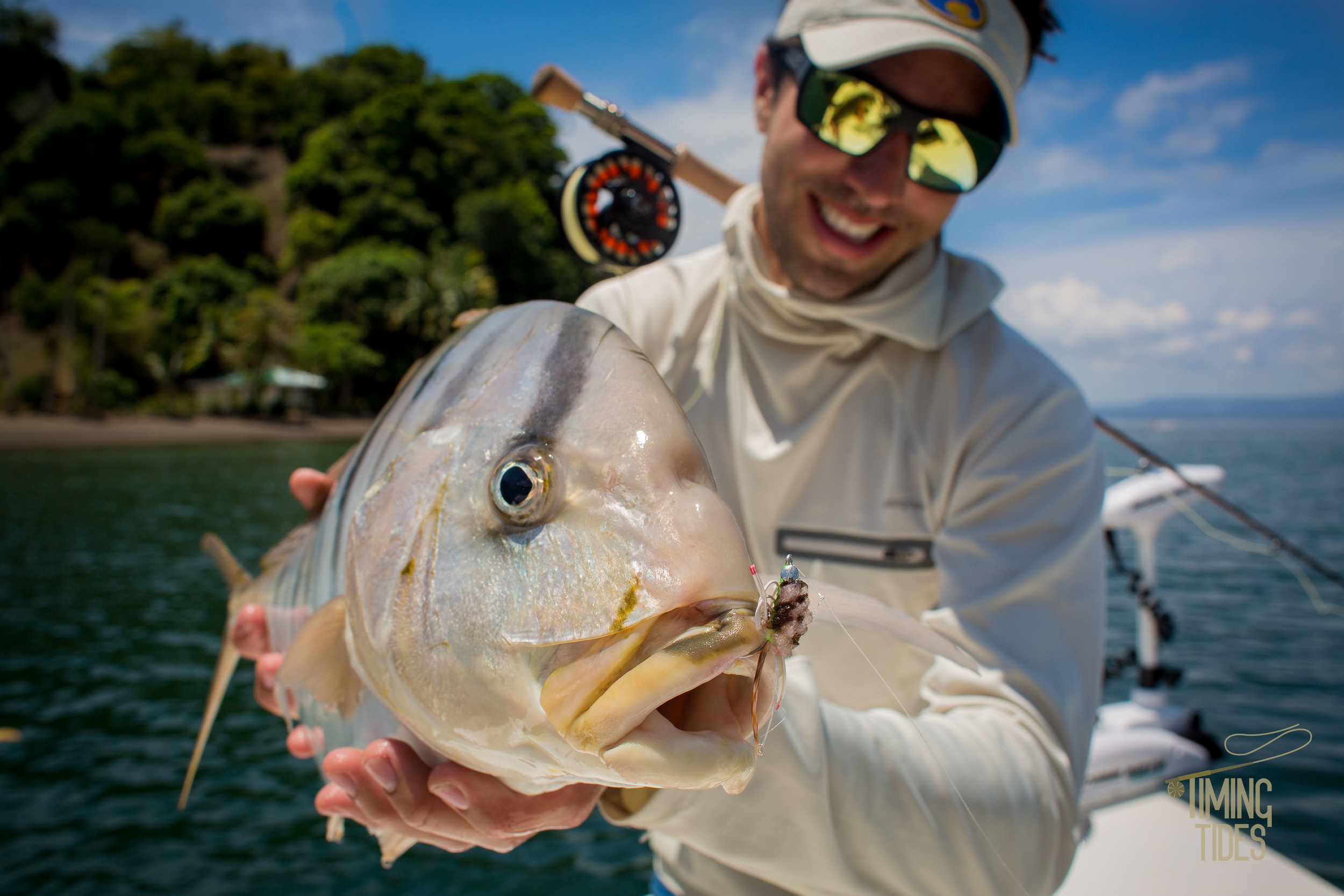 Golden-Trevally-2.jpg