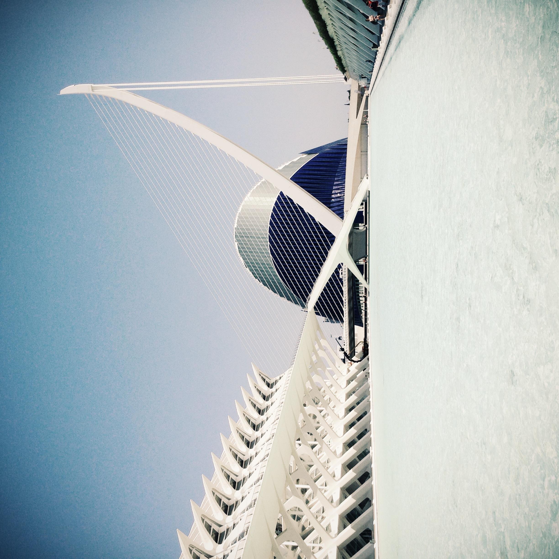 Anahita_Chouhan_antiago_calatrava_architecture_photo_valencia_.JPG