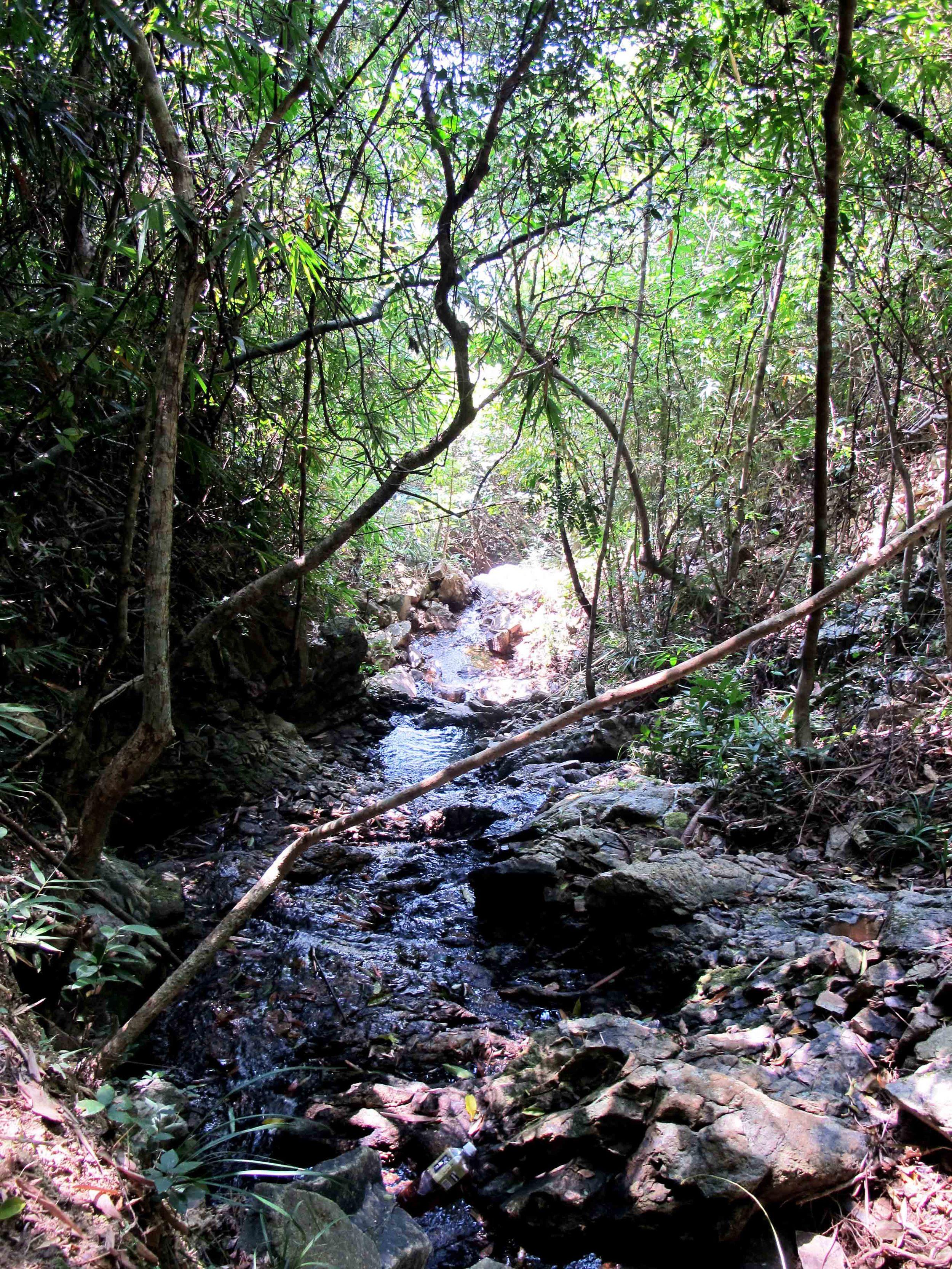 Expect natural streams and waterfalls