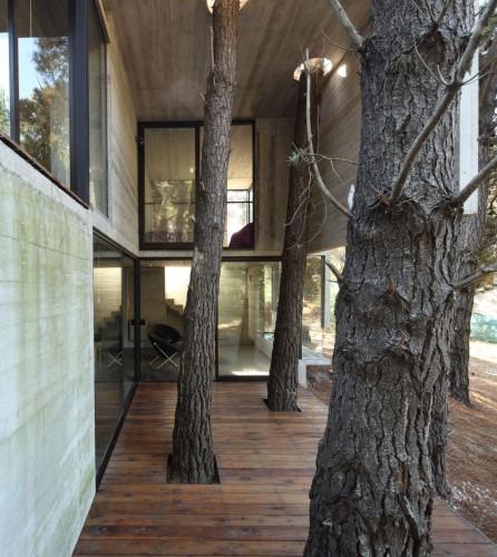 50d27fe6b3fc4b41b300028d_franz-house-bak-architects_casa_franz_02-446x500.jpg