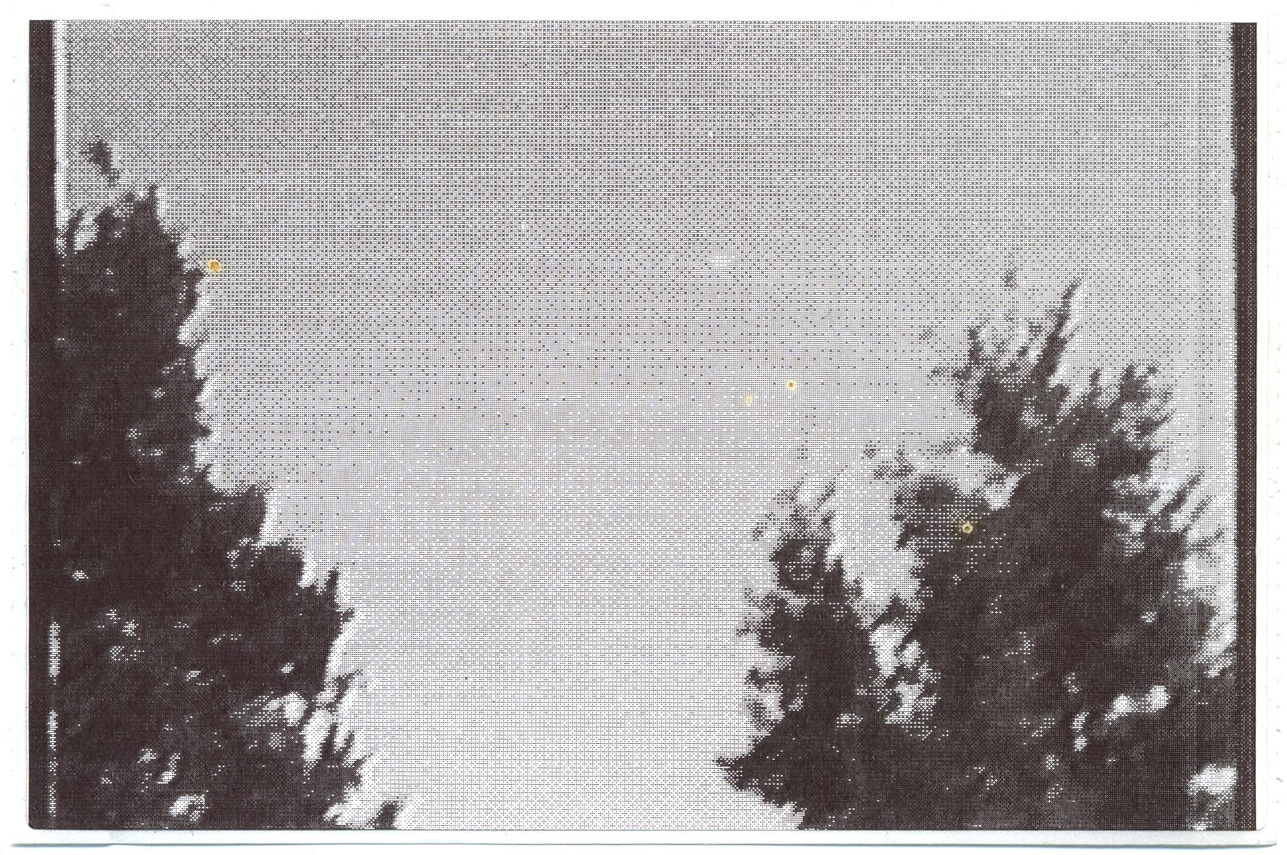 9 loose cropp.jpg