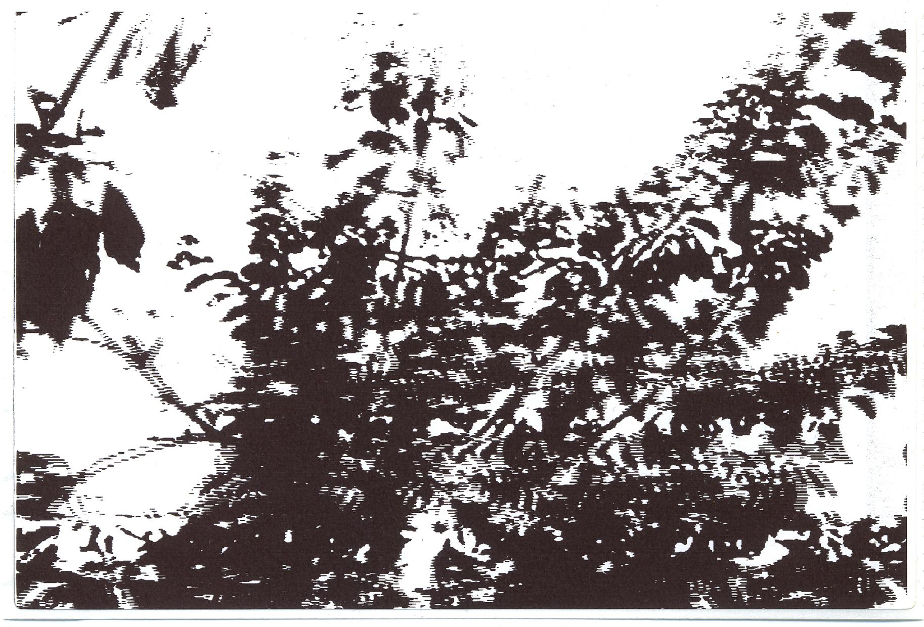 21 loose cropp.jpg