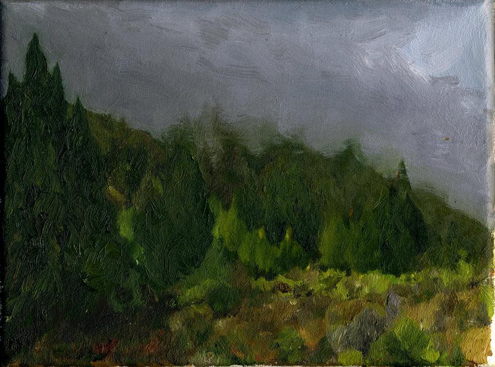 "Mt. Tamalpais from Gravity Car Road #1  Oil on canvas 6"" x 8"" 2016"