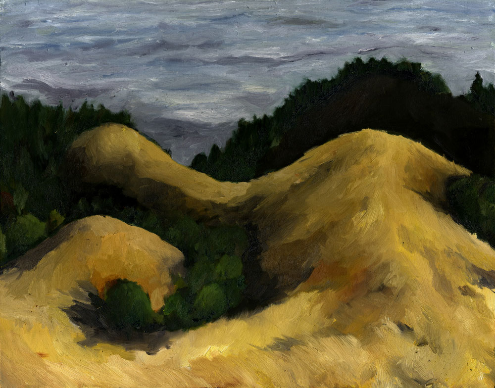 "Bolinas Ridge  Oil on canvas  22"" x 28""  2015"