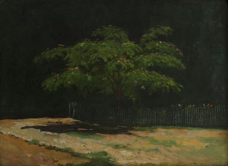 Мимоза 1909
