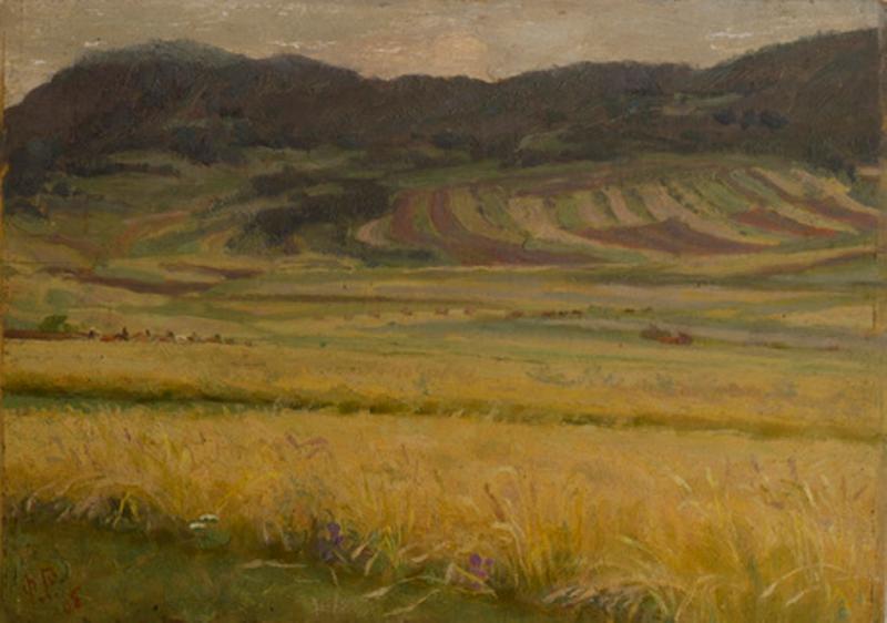 Поле 1905