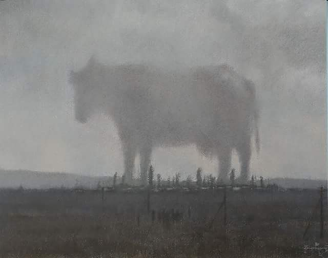 Корова, 2013