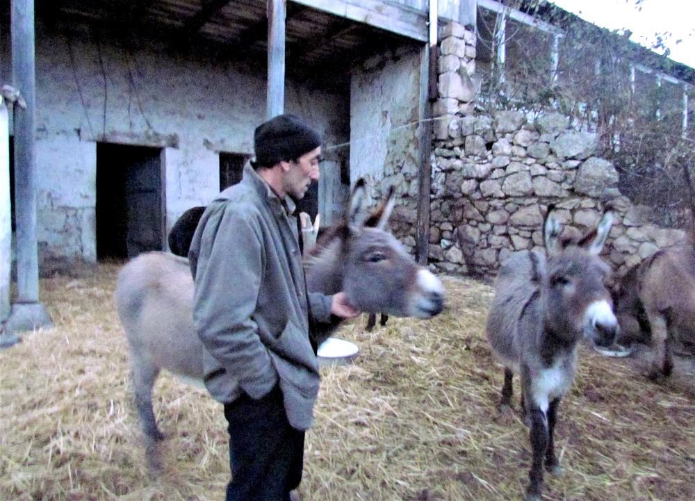 Арам Авакян и обитатели его фермы ©Евгения Филатова
