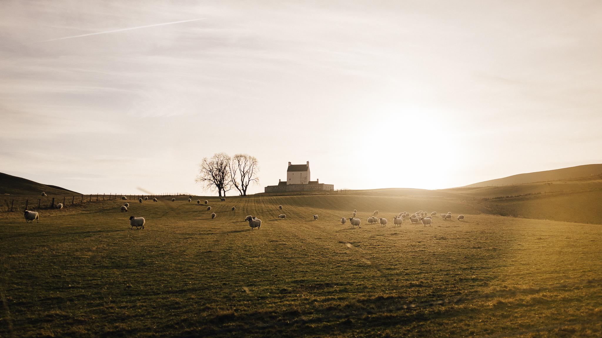 Skotland-blog-031.jpg