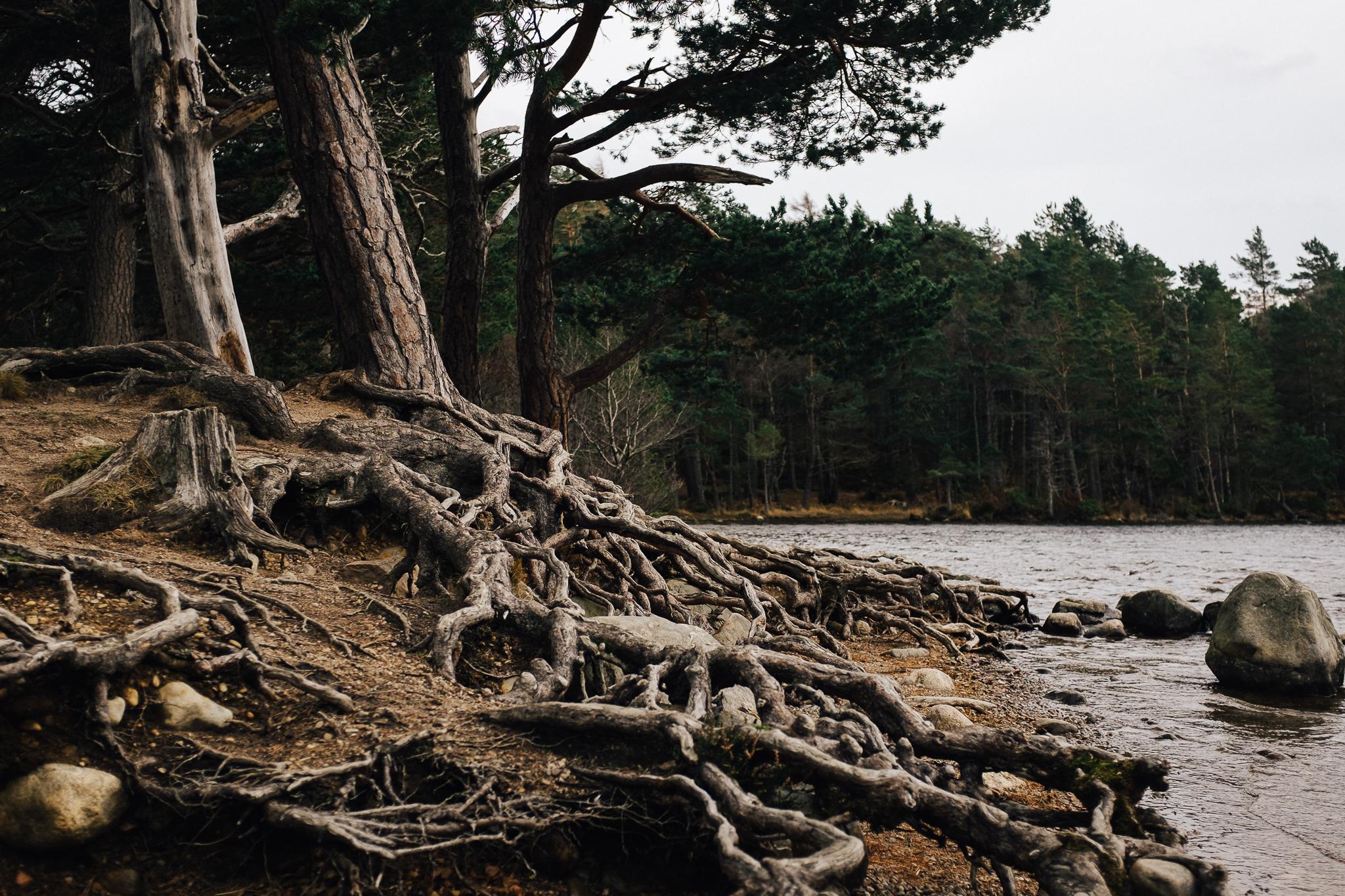 Skotland-blog-047.jpg