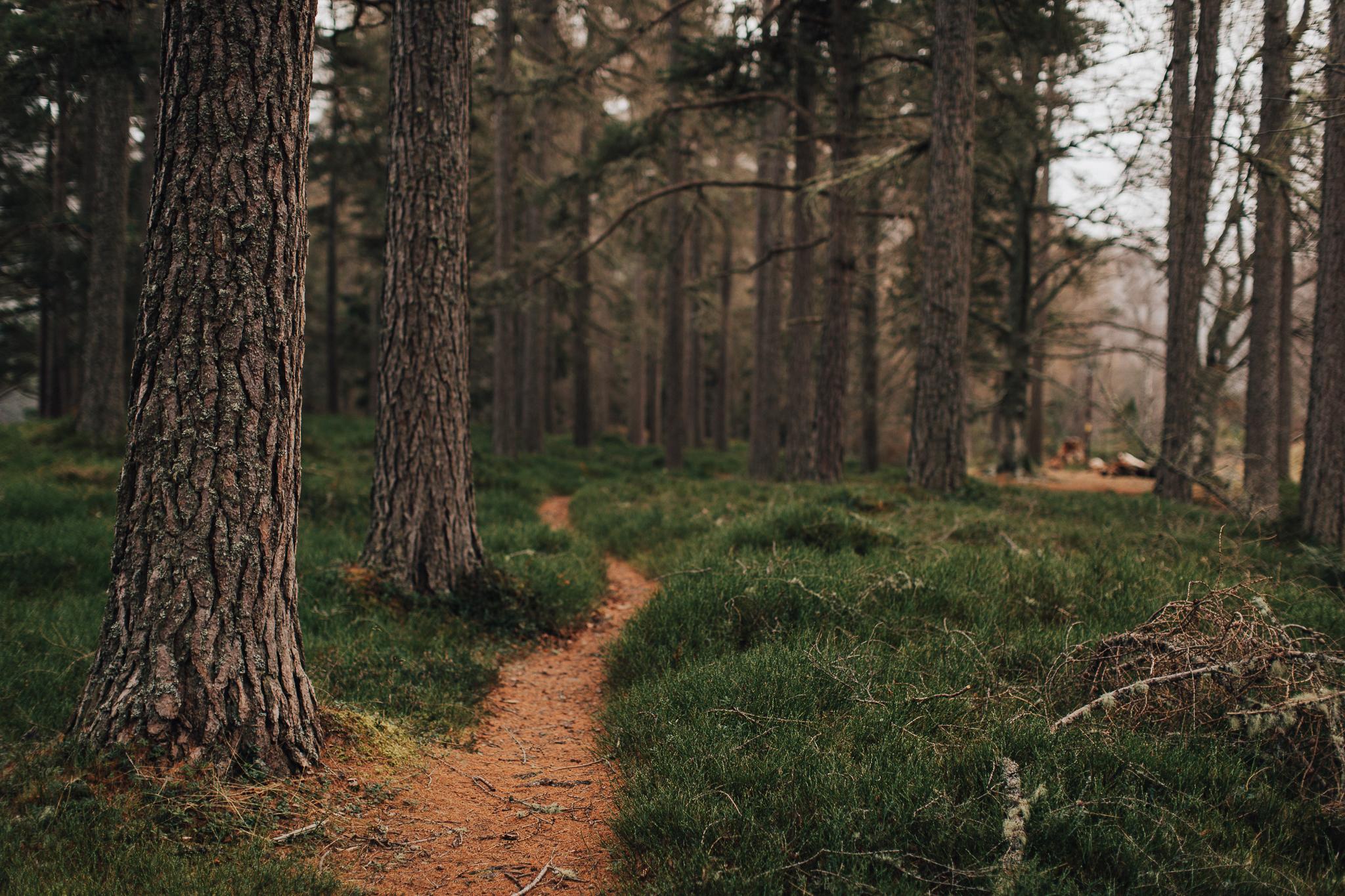 Skotland-blog-049.jpg