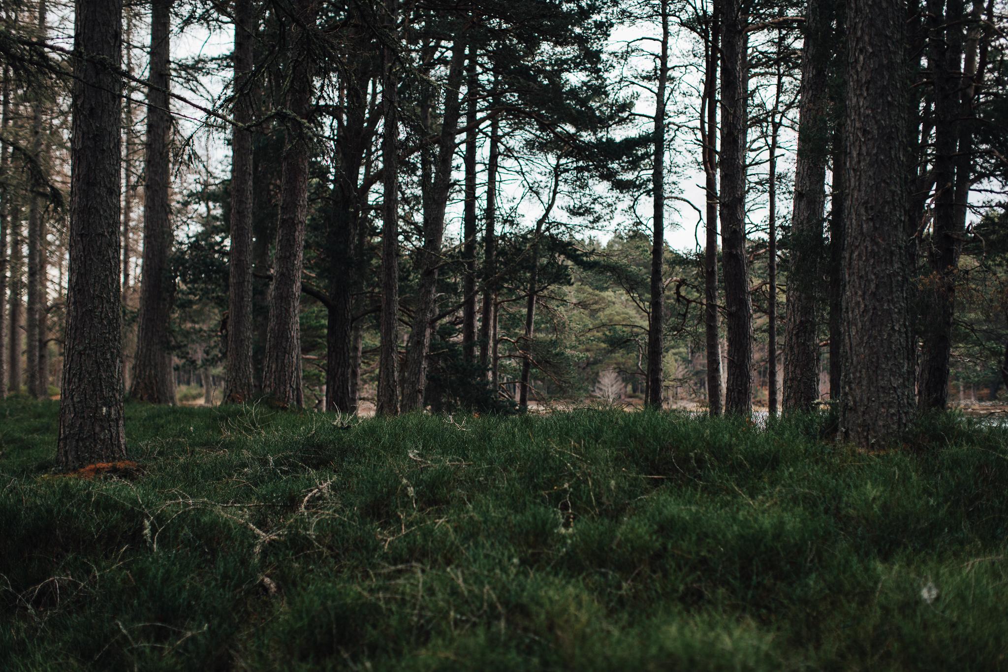 Skotland-blog-070.jpg