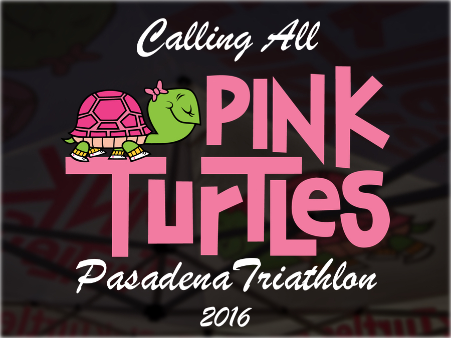 Call All Pink Turtles Pasadena Tri 2016.jpg