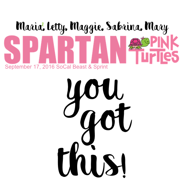 Spartan Pink Turtles