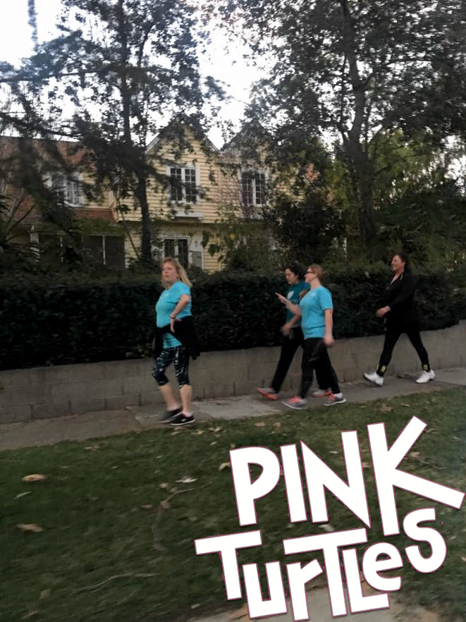 Pink Turtles March 3 2017 Caltech.png