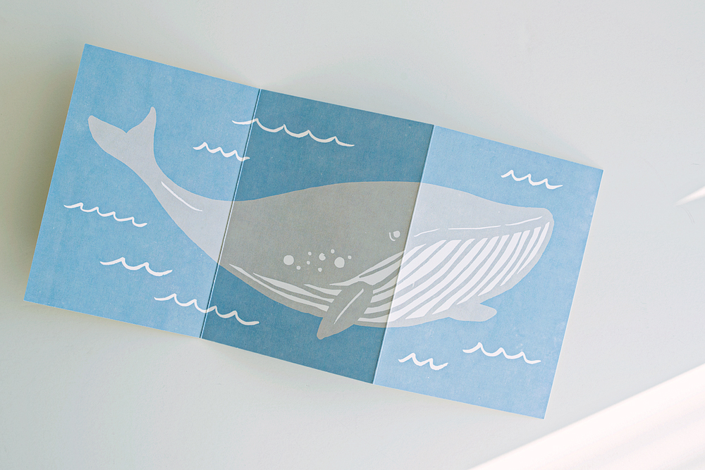 The reverse side of the card featured a giant, awesome whale!