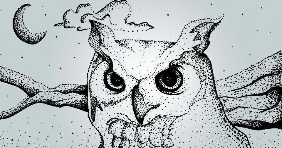 OWL KLEENEX BOX.jpg