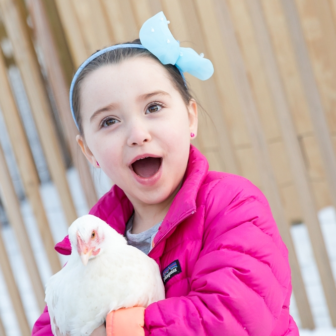 girl with chicken, sea green photography, rhode island family photography, outdoor, winter