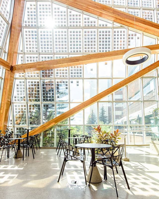 The Agricultural Tech Atrium on campus is one of the most unique additions on the @ualberta campus. Designed by @dialogdesign it boasts functional fir beams combined with solar panels inset in the windows make it as beautiful as it is functional.   www.redlinephoto.ca   #yegarchitecture #yegphotography #yegdesign #yeg #yegarch #yegarchitecturephotographer #yeggers #yegphoto #redlinephotography