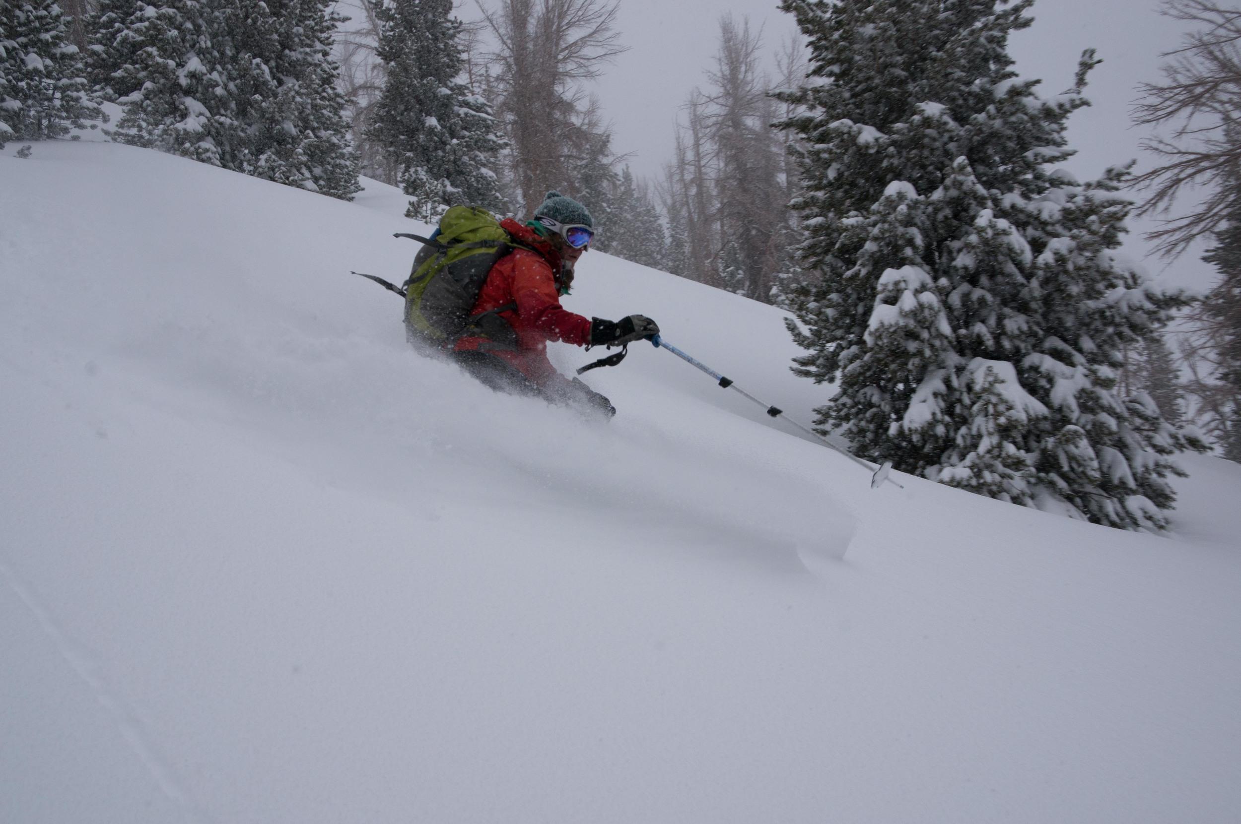 Powder skiing Mammoth backcountry