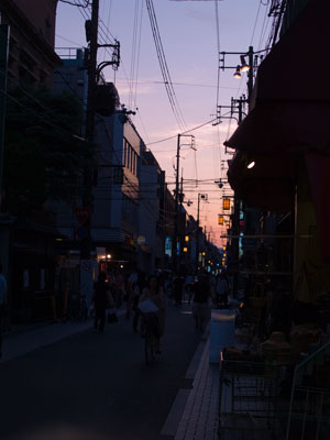 Beautiful Evening in Kyoto